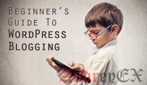 Пособие для новичков в WordPress