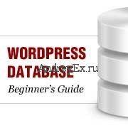 Управление базами данных с помощью phpmyadmin