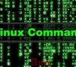12 основных команд Linux для чайников