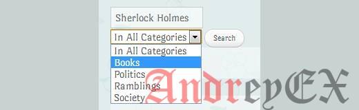 Функция поиска по выбранным категориям в действии на WordPress сайте