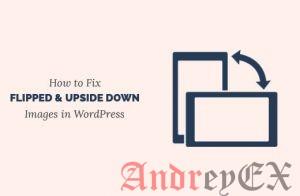 Исправить переворачивающиеся вверх ногами изображения в WordPress