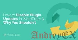 Как отключить обновление плагинов в Wordpress и почему нельзя этого делать