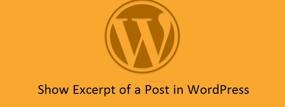 Как отобразить в посту Excerpt через тему в WordPress