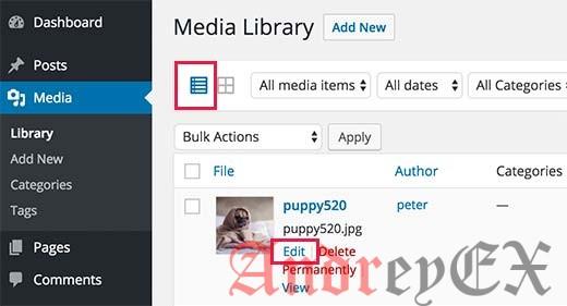 Переключение в режим просмотра списка и нажмите на ссылку ниже редактирования любого изображения