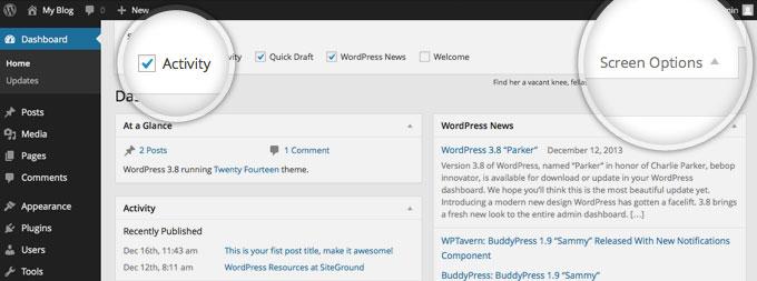 Показ дополнительной информации на панели в WordPress