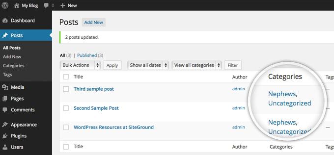 Посты в указанной категории в WordPress