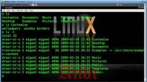 Примеры использования в Linux команды LS