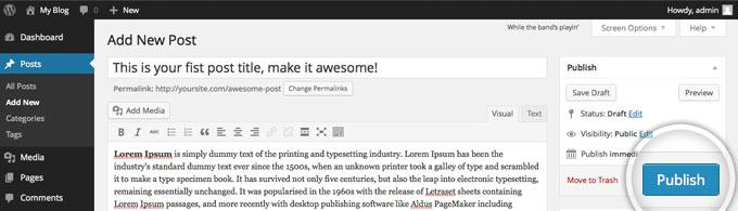 Публикация поста в WordPress