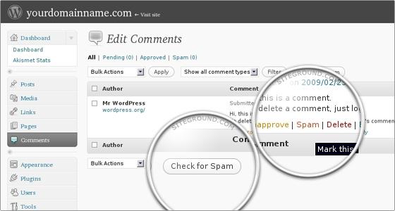 Ручная проверка комментарии на спам с помощью Akismet в WordPress