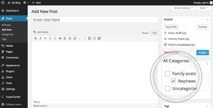 Установите категории для поста в WordPress