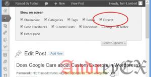 Включить Excerpt в посте WordPress
