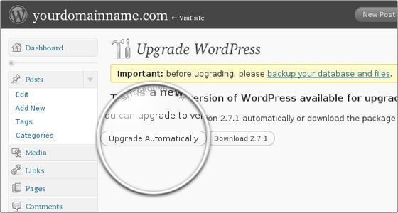 Вопрос об обновлении в WordPress