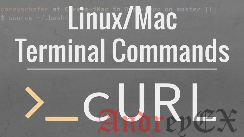 5 основных примеров команды Curl