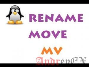 Как переместить файлы с помощью команды Linux: mv