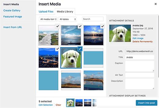 Общие вопросы изображения в WordPress