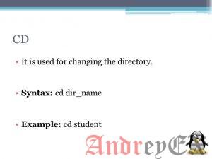 """Примеры использования команды """"cd"""" в Linux"""