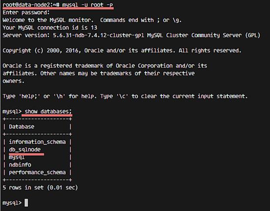 Проверка базы данных на узлах данных