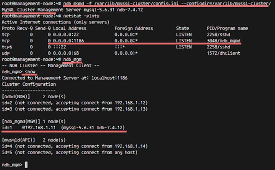 был запущен MySQL узел управления кластера.