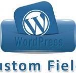 Как отобразить пользовательские поля вне цикла в WordPress