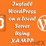 Как создать локальную установку WordPress - безрисковое тестирование