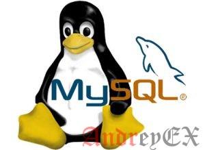 Как установить MySQL на Linux