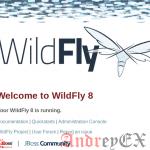 Как установить WildFly с Nginx в качестве обратного прокси на Ubuntu 16.04