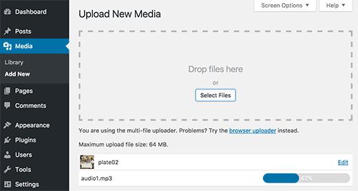 Вы можете добавить аудио и графические файлы в WordPress