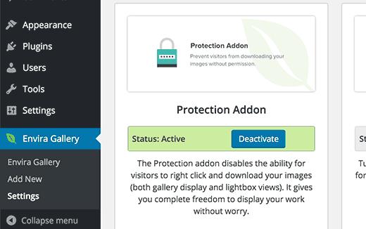 Аддон защиты от кражи изображений в плагине Envira Gallery для WordPress