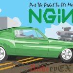 Как установить NGINX с PHP-FPM и MYSQL на Ubuntu 16.04