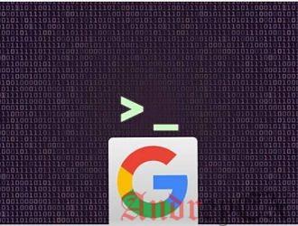 Выполните поиск Google из командной строки в Linux