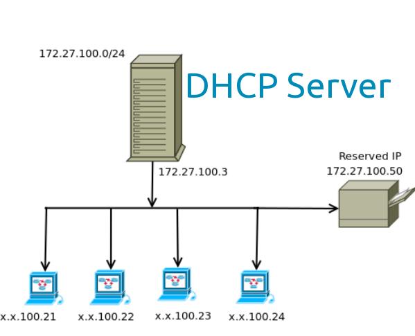 Как настроить DHCP-сервер в локальной сети