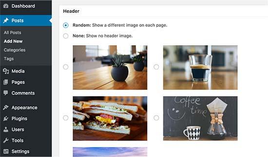 Случайный заголовок в посте и странице в WordPress