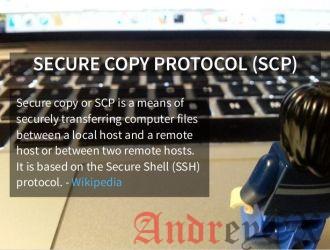 bash: scp: command not found, несмотря на то, что он существует