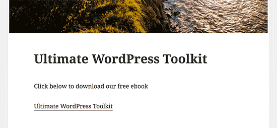загрузить ссылку на PDF файл в блоге WordPress