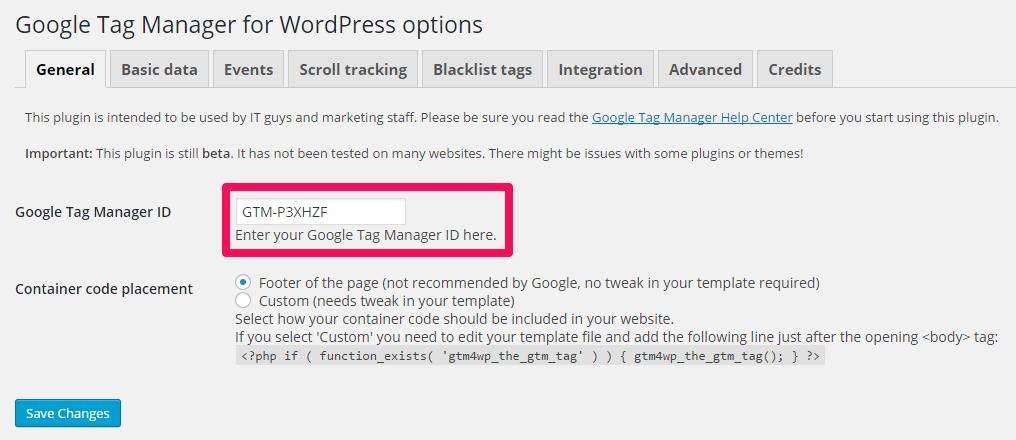 Экран общих настроек в Wordress для Google Tag Manager
