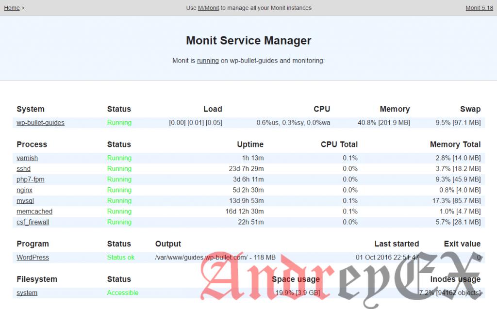 Проверьте вашу новую пользовательскую программу в веб-интерфейсе Monit.