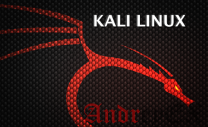 Установка средства Kali Linux Katoolin в Linux