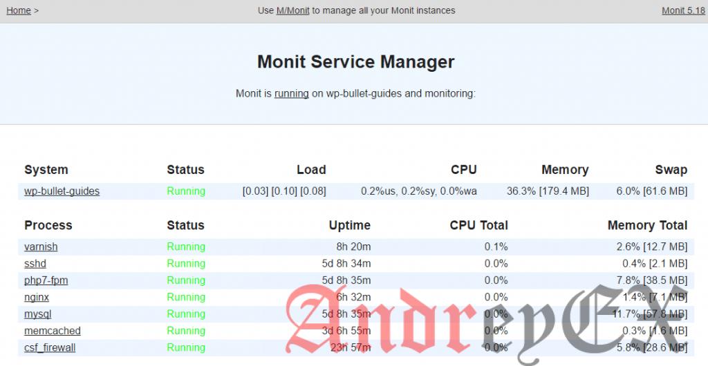 Использование Monit для мониторинга