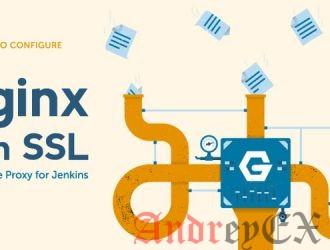 Как настроить Jenkins с помощью SSL и обратного прокси Nginx