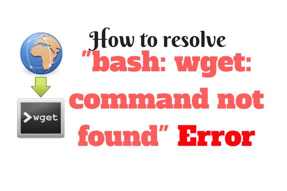 Как решить ошибку «bash wget command not found»