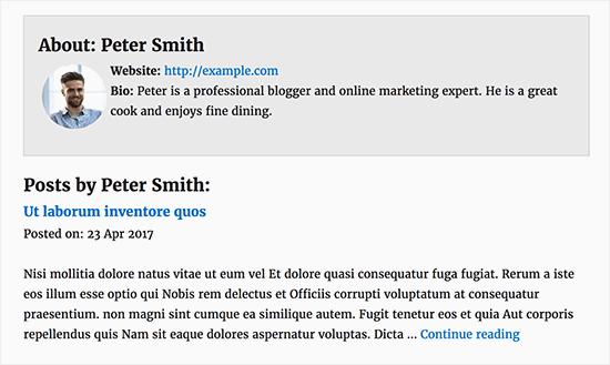 Пользовательская страница профиля автора в WordPress