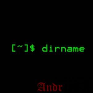 Команда dirname Linux для начинающих (4 примера)