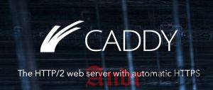 Как установить WordPress с Caddy на CentOS 7