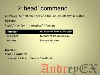 Команда Head в Linux для начинающих (5 примеров)