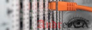 Гибридные сервера против выделенных серверов: Какая разница?