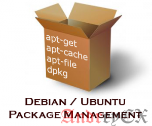 Список всех установленных пакетов с помощью apt на Debian 9