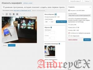 WordPress - Фон