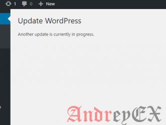 Как избавиться от другого обновления в ходе ошибки в WordPress