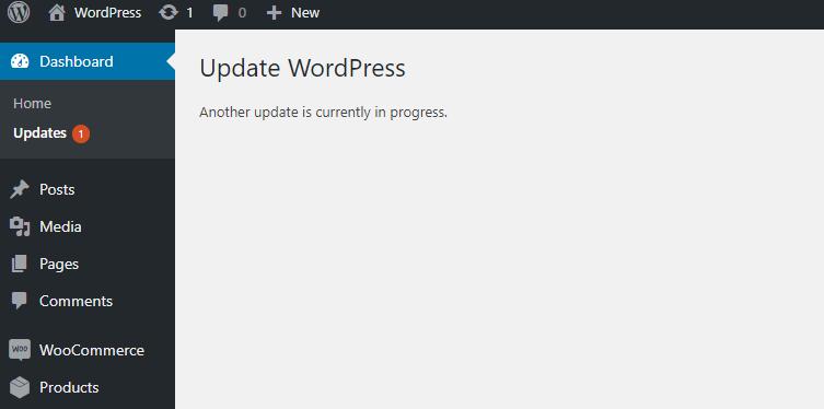 Как избавиться от другого обновления при ошибки в WordPress