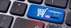 Как исключить продукты из определенной категории на странице магазина в WooCommerce